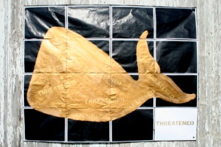 Golden Whale #1