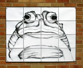 Fat Frog (ode to Diego)